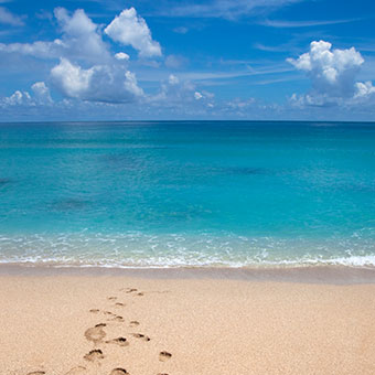 Things To Do in Saint Maarten: Dawn Beach