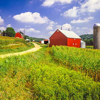 Things To Do in New Holland: Amish Farm and House