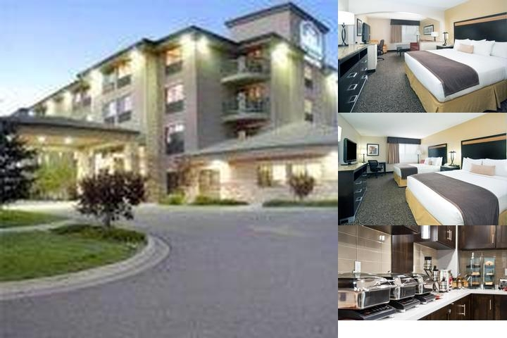 Best Western Inn & Suites of Castle Rock photo collage