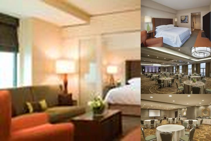 Sheraton Boston Hotel photo collage