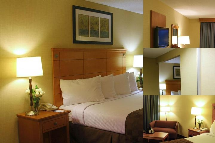 Best Western Danbury / Bethel photo collage