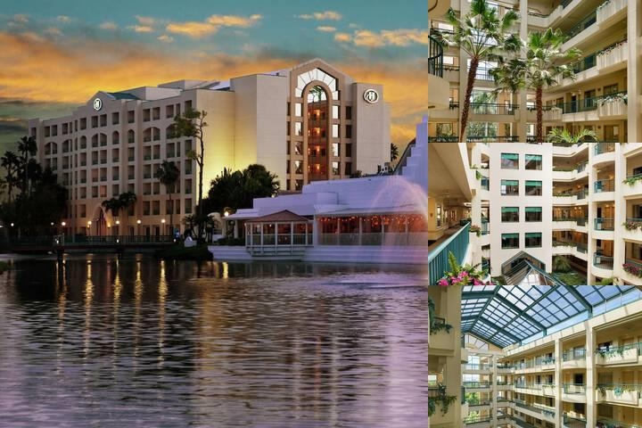 Hilton Suites Boca Raton photo collage