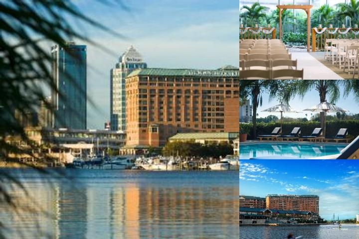 Westin Tampa Harbour Island photo collage