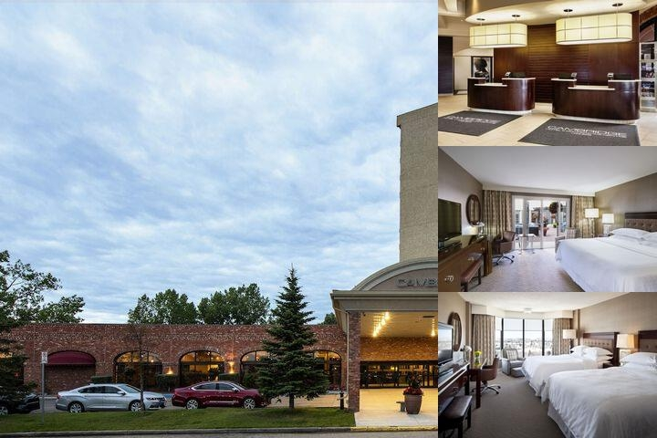 Sheraton Red Deer Hotel photo collage