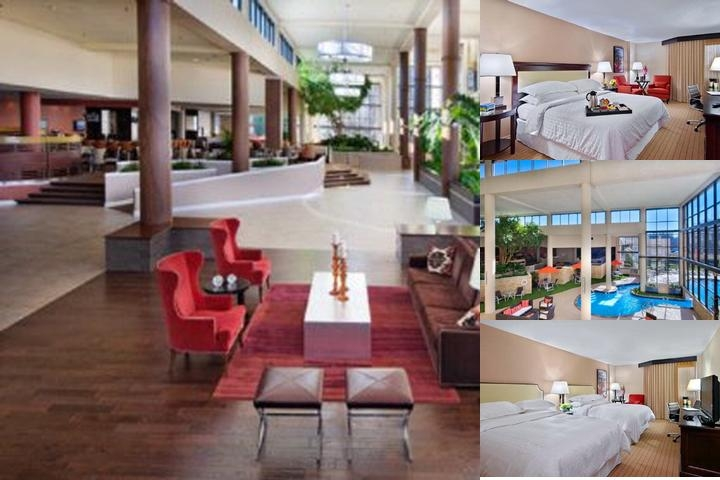 Sheraton Charlotte Airport photo collage