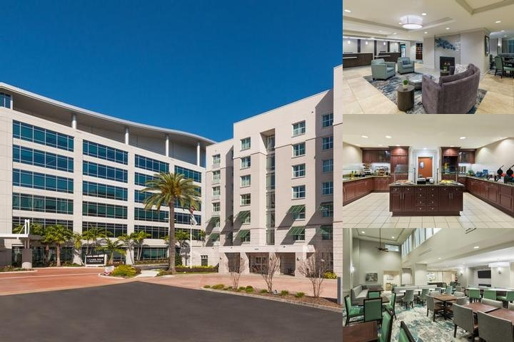 Homewood Suites by Hilton Tampa Airport / Westshor photo collage