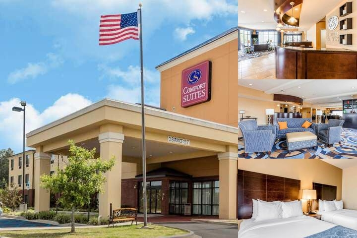 Comfort Suites Pell City photo collage