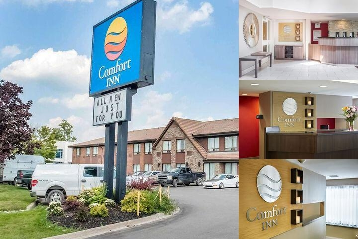Comfort Inn Newmarket photo collage