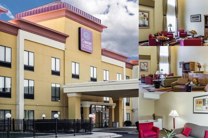 Comfort Suites Clayton photo collage