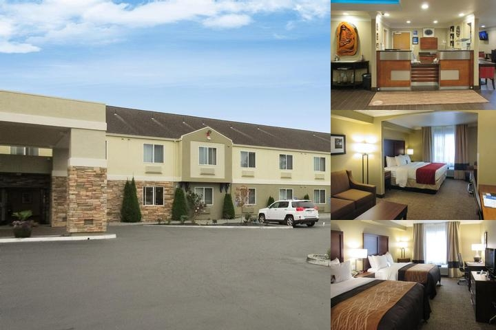 Comfort Inn Arcata photo collage