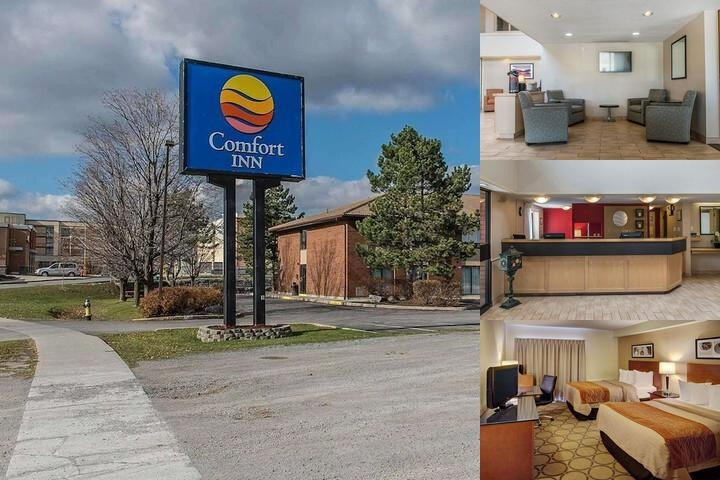 Comfort Inn Kingston (401) photo collage