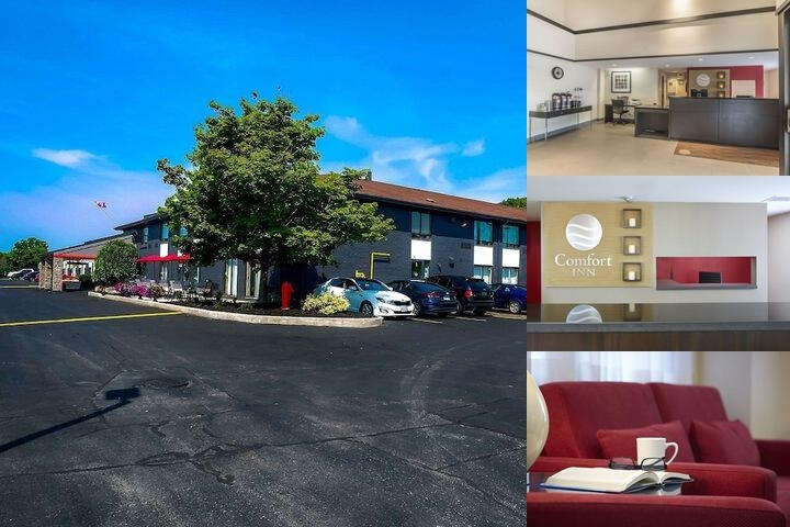Comfort Inn Belleville photo collage