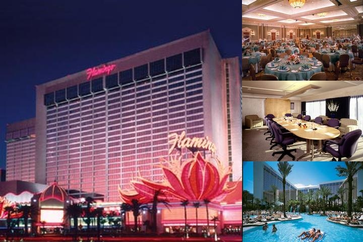 Flamingo Las Vegas photo collage