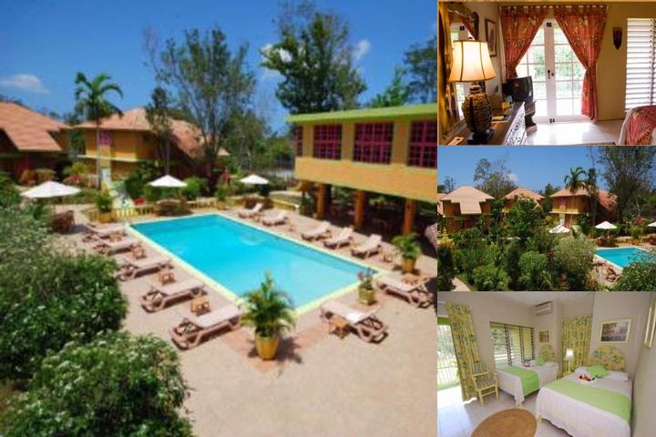 The Oasis Resort photo collage