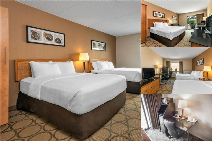 Comfort Inn Dryden photo collage