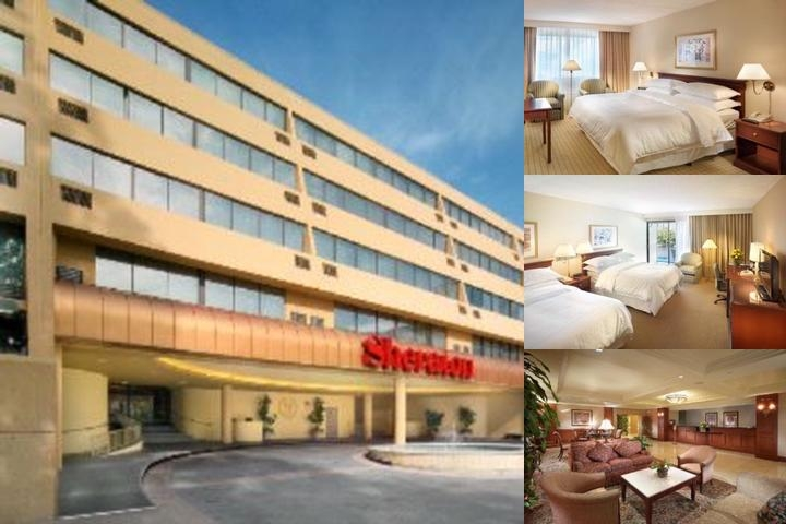 Sheraton Pasadena Hotel photo collage