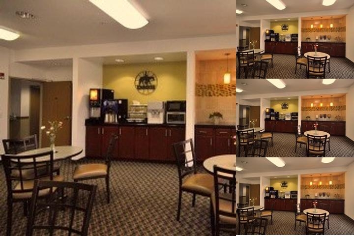 Best Western Roanoke Inn & Suites photo collage