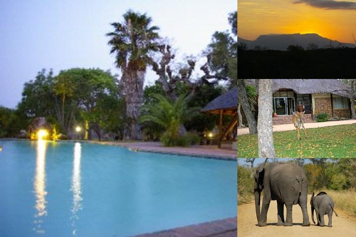 Matumi Game Lodge photo collage