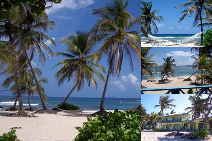 Hibiscus Beach Resort photo collage