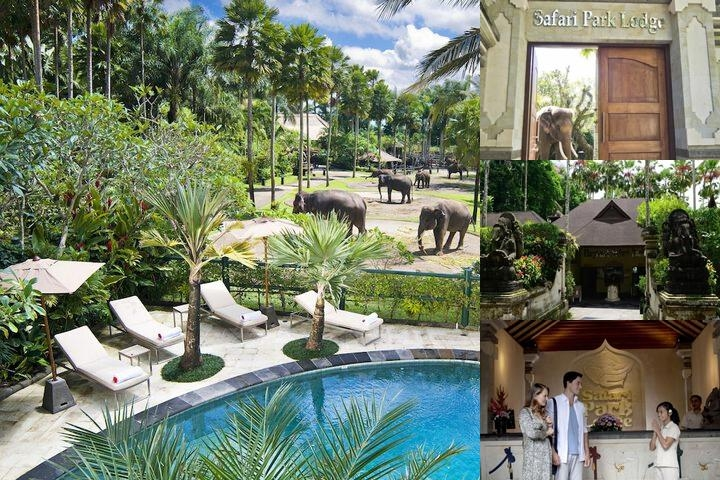 Elephant Safari Park Lodge photo collage