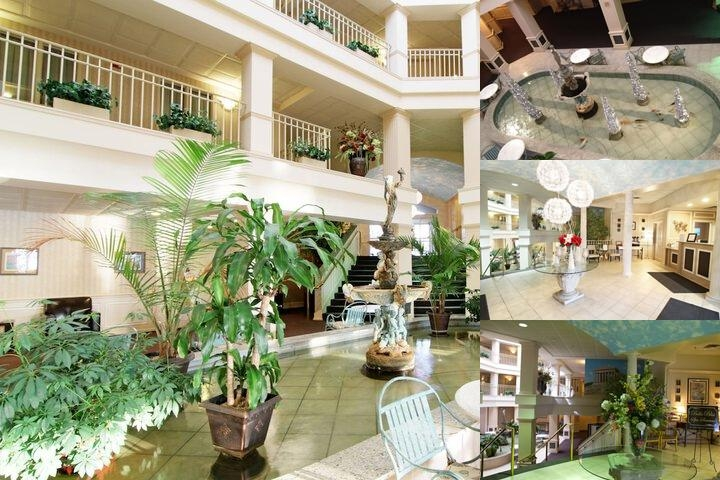Bella Vista Suites photo collage