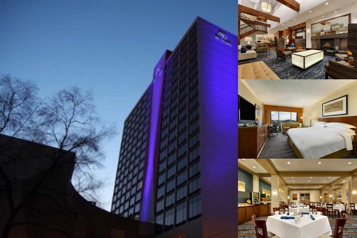 Hilton Knoxville photo collage