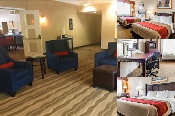 Comfort Inn Somerset Pa 202 Harmon 15501