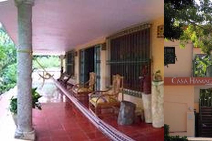 Casa Hamaca Guesthouse photo collage