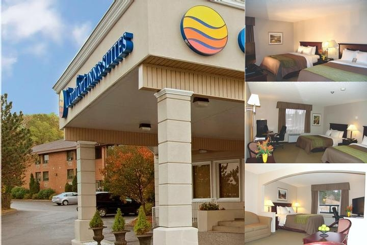 Comfort Inn & Suites Essa photo collage