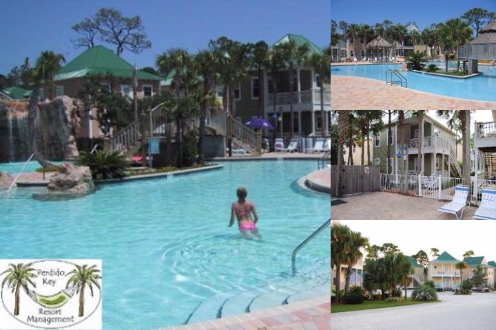 Purple Parrot Resort photo collage