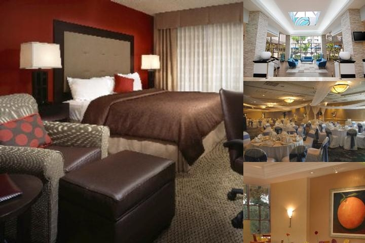 Holiday Inn & Suites Sawgrass Mills photo collage