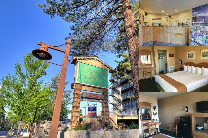 Pepper Tree Inn photo collage
