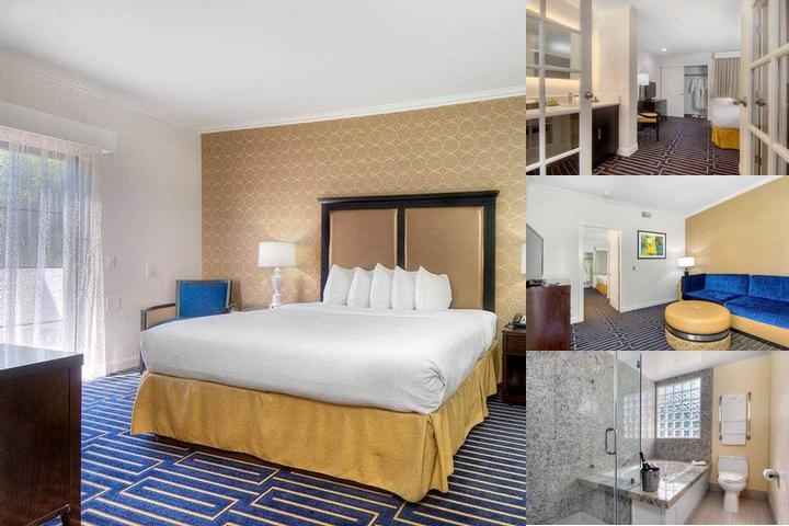 Best Western Plus Palm Court Hotel photo collage