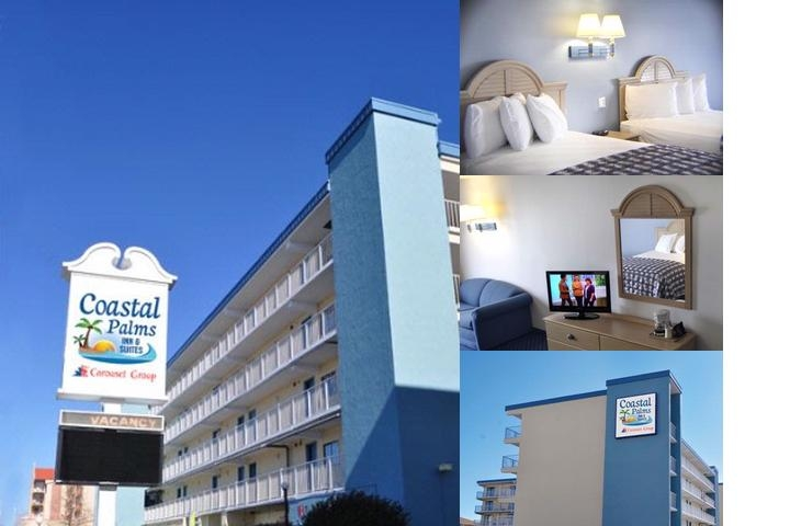 Coastal Palms Inn & Suites photo collage