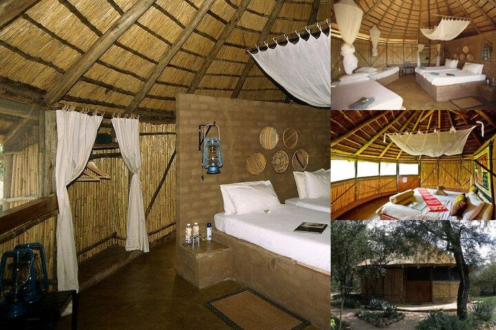 Umlani Bushcamp Lodge photo collage