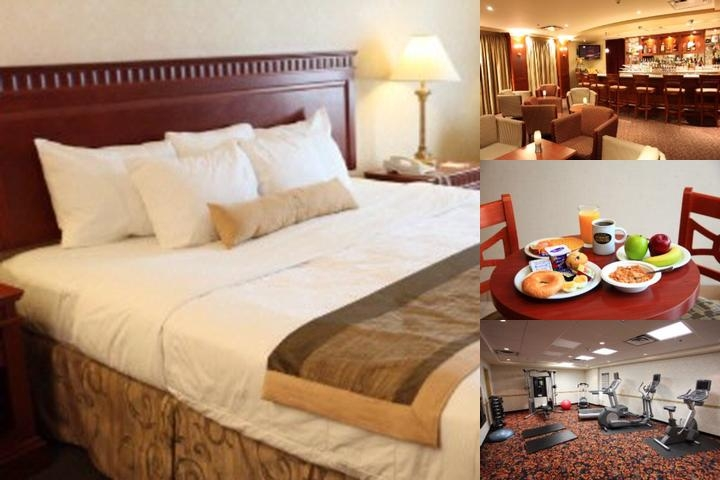 Best Western Plus Montreal Airport Hotel photo collage