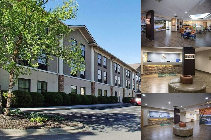 Quality Inn & Suites University photo collage