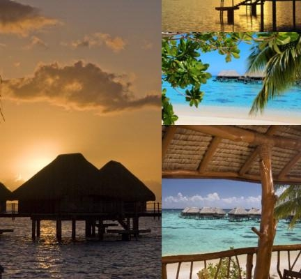 Hilton Moorea Lagoon Resort & Spa photo collage