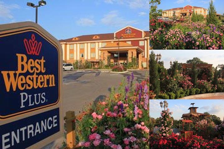 Best Western Plus Blanco Luxury Inn photo collage