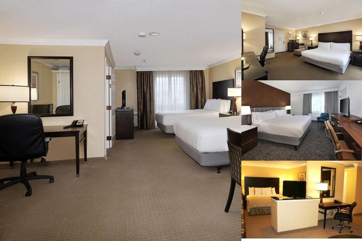 Holiday Inn & Suites San Mateo photo collage