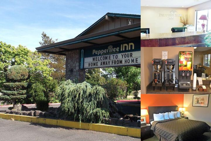Peppertree Inn photo collage