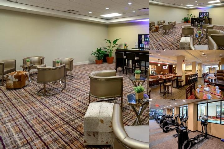 Houston Marriott North photo collage