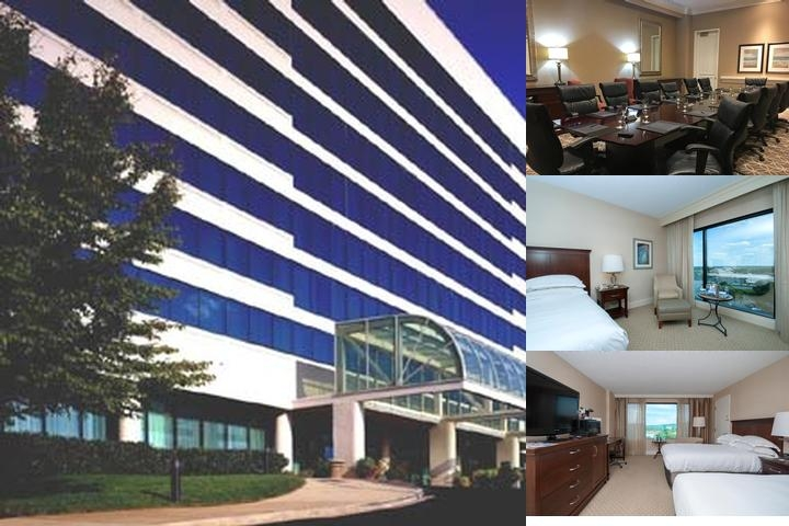 Hilton Greenville photo collage