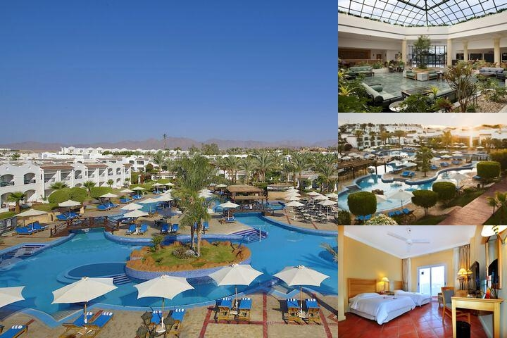 Hilton Sharm Dreams Resort photo collage