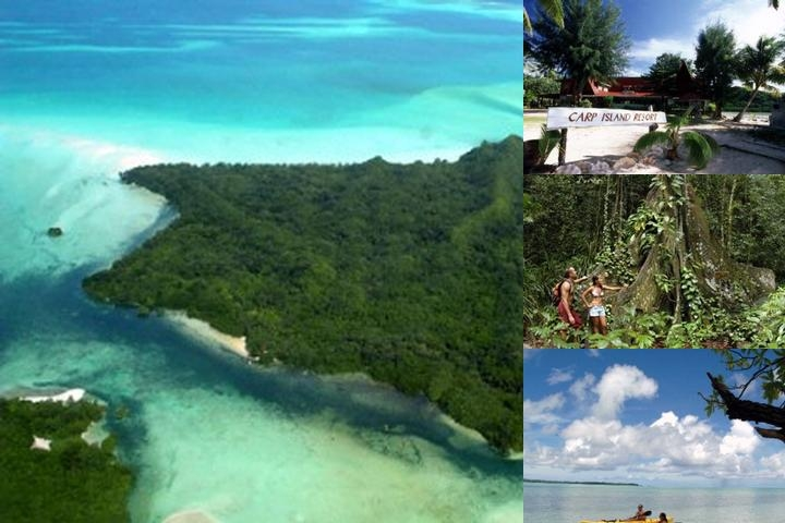 Carp Island Resort / Palau Diving Center photo collage