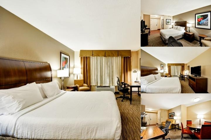 Hilton Garden Inn Tampa North photo collage