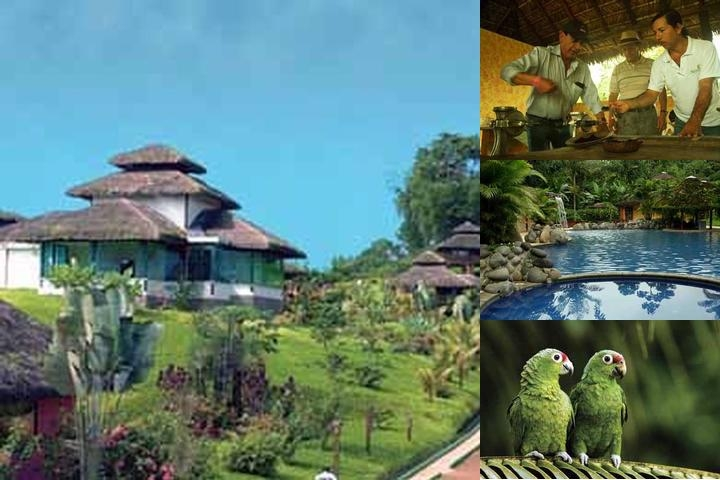 Arasha Tropical Forest Resort & Spa photo collage