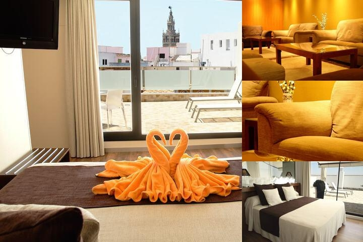 Hotel Don Paco photo collage