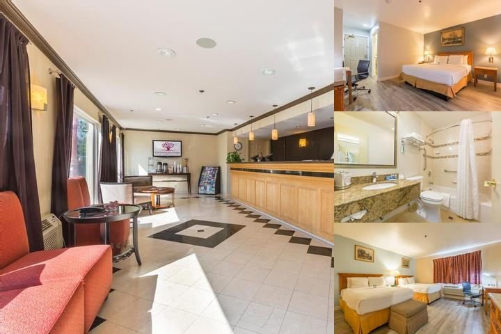 Radisson Blu Hotel Dubai Deira Creek photo collage