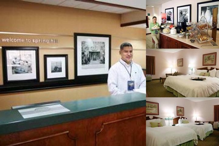 Hampton Inn Springhill photo collage